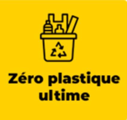 Plan Plastique.  Présentation du document stratégique et mise en œuvre du plan d'actions