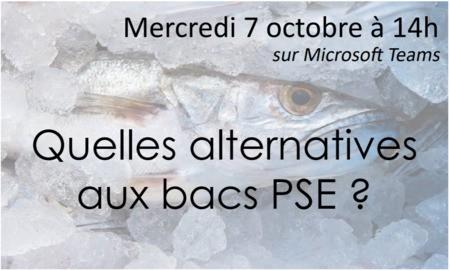 Workshop en ligne : Quelles alternatives aux bacs PSE?